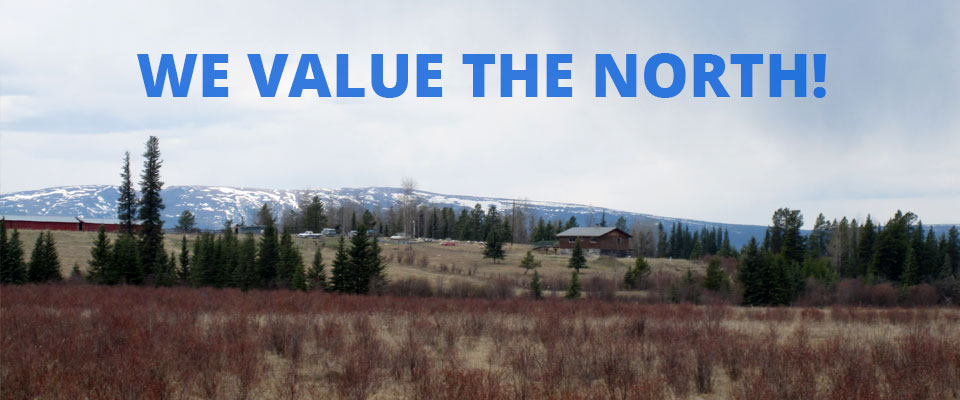 We value the north - mountain background